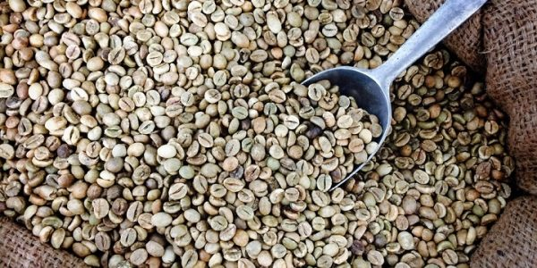 Image of an organic coffee beans