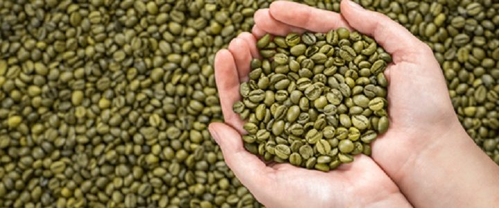 Image of a high quality green coffee beans you can find online